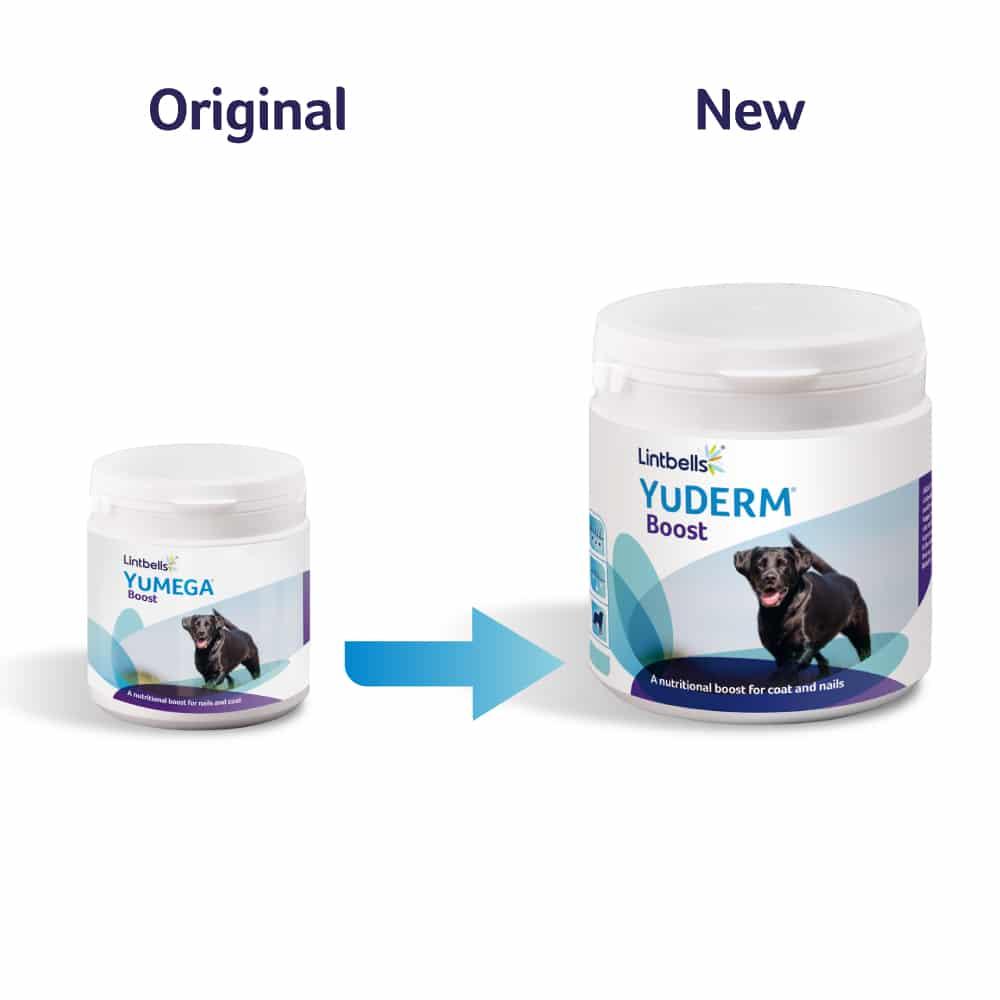 YuDERM Boost Transition Image