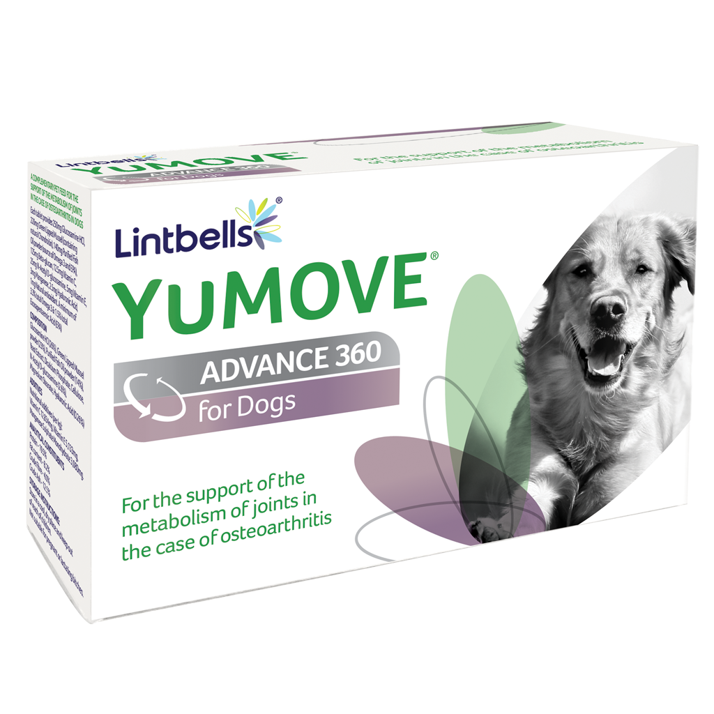YuMOVE ADVANCE 360 for Dogs