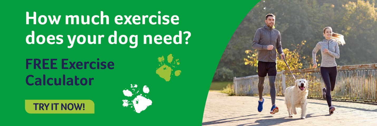 How many miles, Lintbells dog exercise calculator