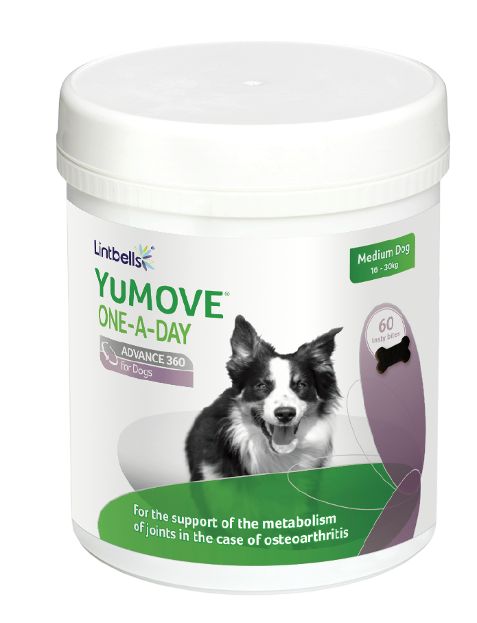 YuMOVE ONE-A-DAY ADVANCE 360 for Dogs