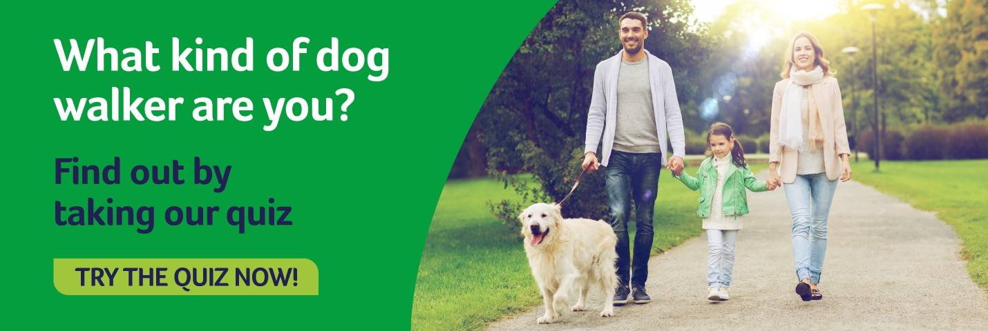 What kind of dog walker are you homepage banner